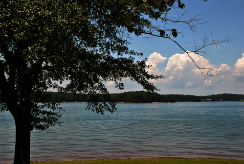 park usa lake tree sc clouds waterfront cove south southcarolina cumulus carolina lakefront oconee keowee cumulusclouds southcove lakekeowee cumuluscloud southcovepark keoweelake