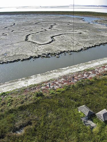 Salt Pond A21 in 2006