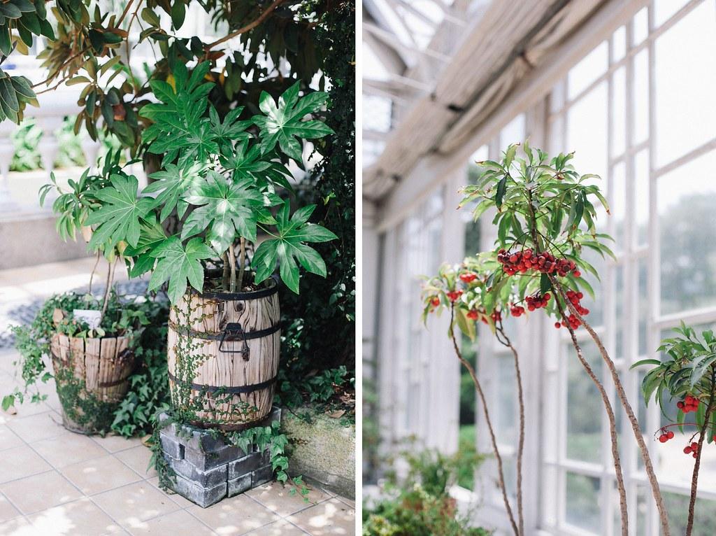 Seoul Greenhouse 003