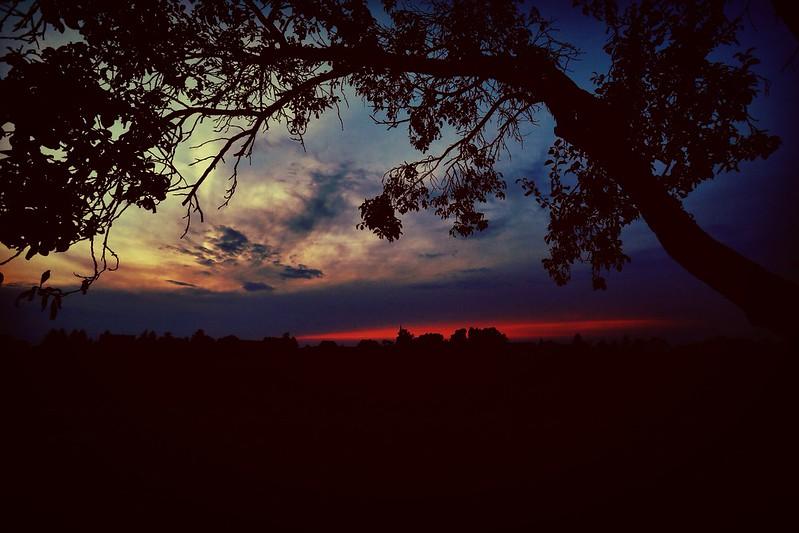26/365 - Sunset
