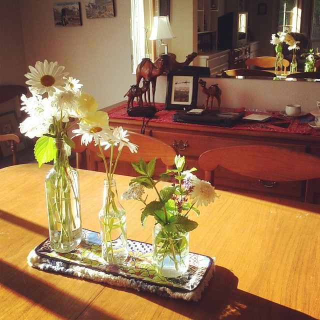 Fresh flowers and evening light #beautifullyordinary