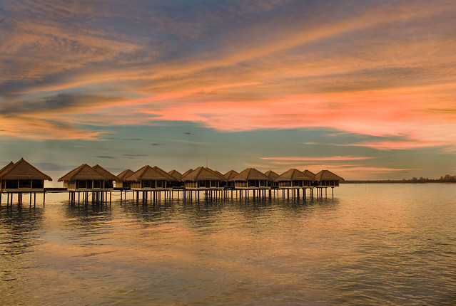 AVANI Sepang sunset view