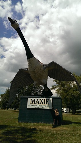 Maxie, the world's largest goose