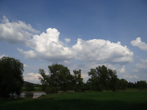 Wolken schnelles Flügelpferd
