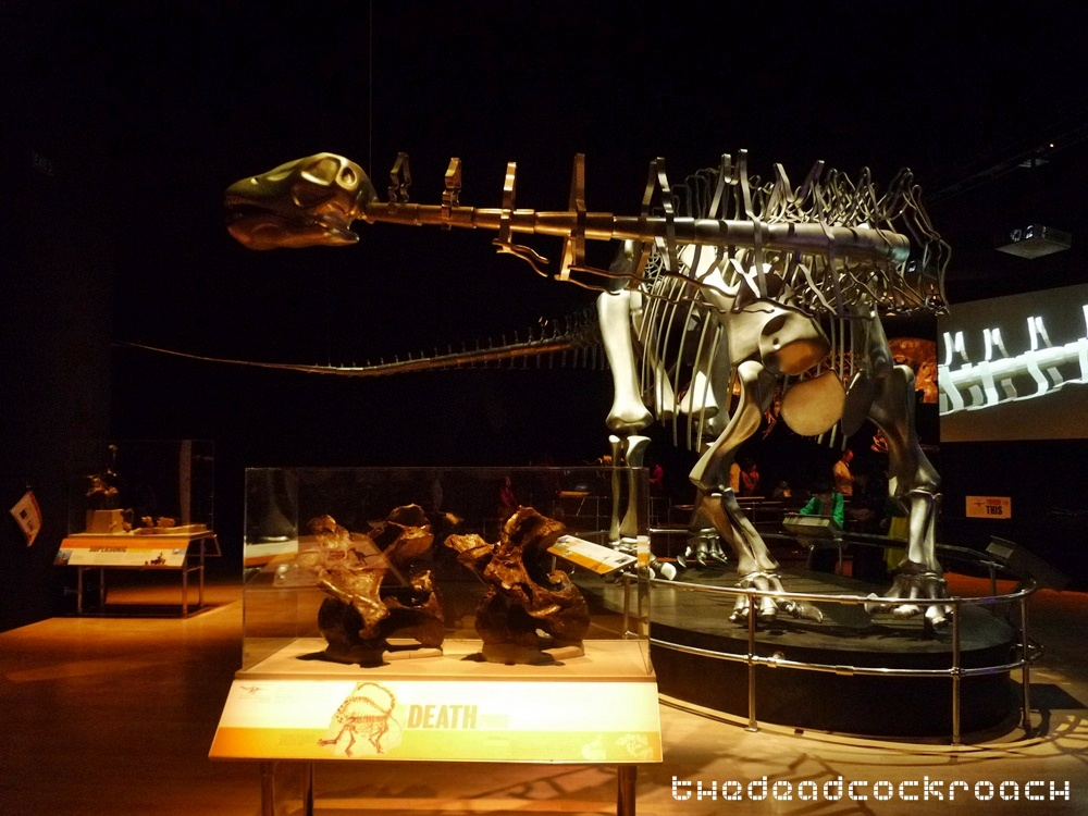 artscience museum, dawn to extinction, dinosaurs, exhibition, marina bay sands, mbs, singapore,apatosaurus louisae