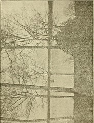 """Image from page 35 of """"Some old historic landmarks of Virginia and Maryland, described in a hand-book for the tourist over the Washington, Alexandria and Mount Vernon electric railway"""" (1902)"""
