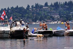 People at the 2014 Seattle Seafair
