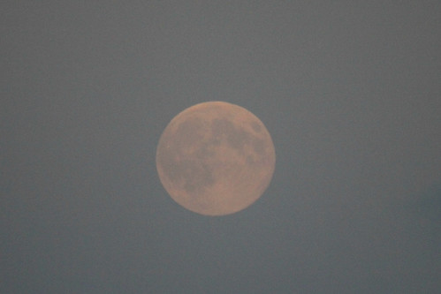 August super moon