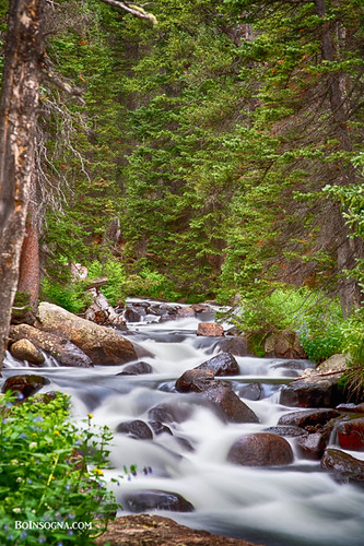 trees mountains green nature water creek forest landscape outdoors waterfall woods colorado waterfalls backcountry rockymountains mountainstream bouldercounty cascadingwaterfalls jamesboinsogna