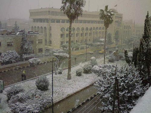 snow snowy idlib