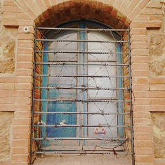 Wired Web Window