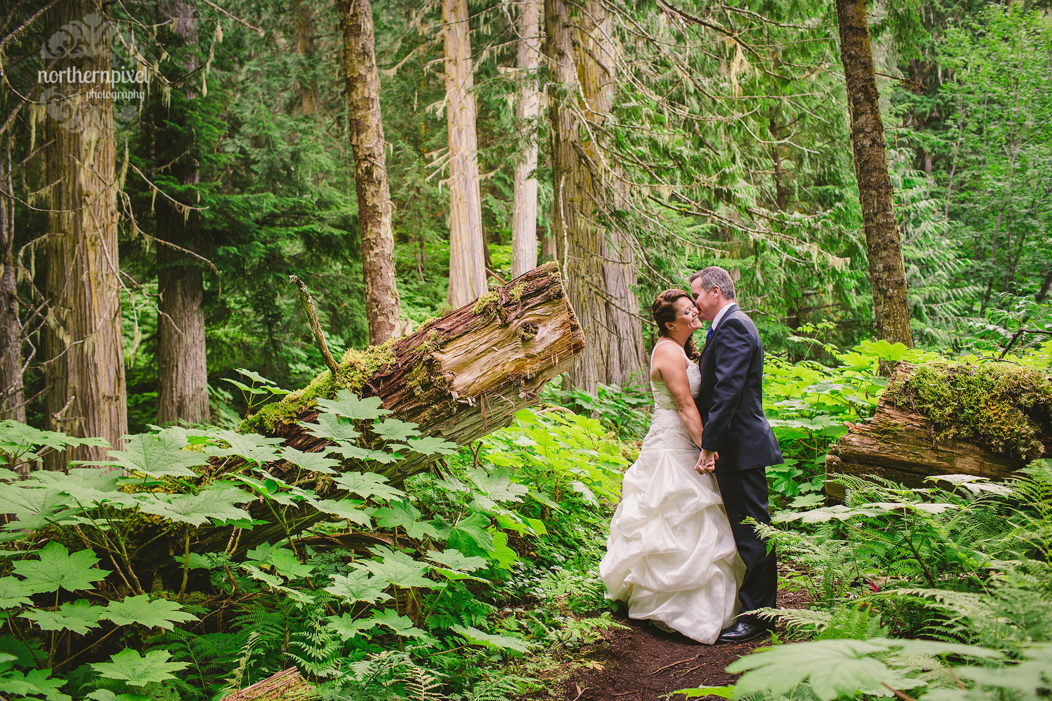 Wedding Photography at the Ancient Forest Prince George BC Wedding