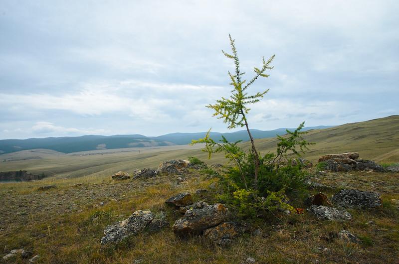 20140808-Байкал_186