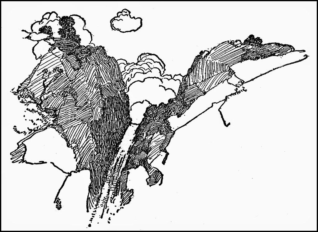 WyethN54