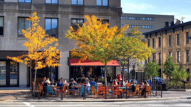 Colectivo Tenny Plaza -- Madison On The Square