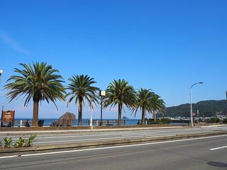伊豆半島の海沿い