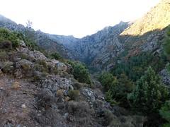 Le ravin du Logoniellu depuis le versant W de la pointe 673m