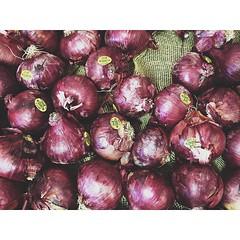 plant(0.0), vegetable(1.0), onion(1.0), red onion(1.0), shallot(1.0), purple(1.0), produce(1.0), food(1.0),
