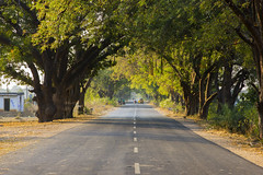 Beautiful Roads of Jannaram