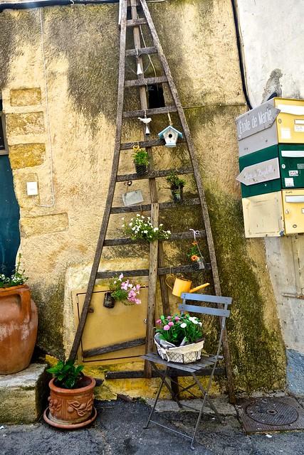 Olive picking ladder