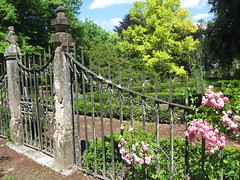 2014-1-portugal-153-coimbra-jardim botanico