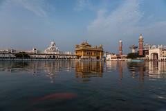 India - Golden Temple, Amritsar, Punjab