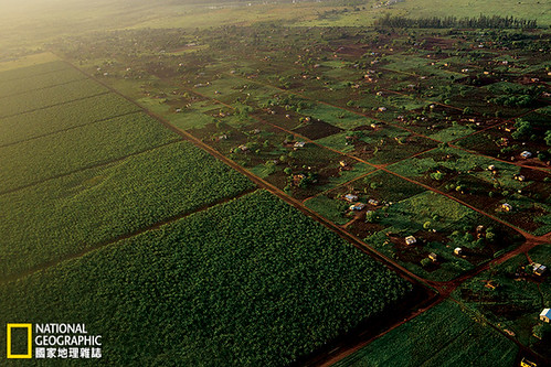 下一個世界糧倉:當我們失去世居之地