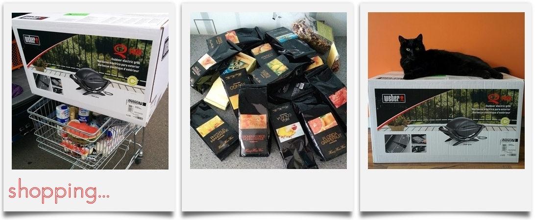 Shopping | Weber Grill Q1400 | Haas & Haas Tee