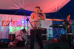 Glastonbury 2014 -Mik Artistik's Ego Trip