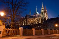 Cathedral - Prague