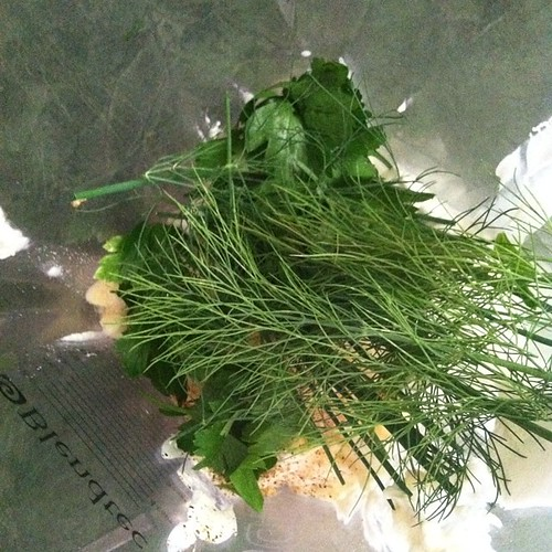 We're making Ranch Dressing with fresh and dried herbs. #cookingwithkids #kidsinthekitchen