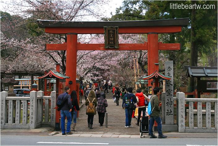 奈良公園-13