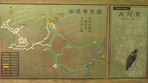 20140719-鳴鳳古道 (101)