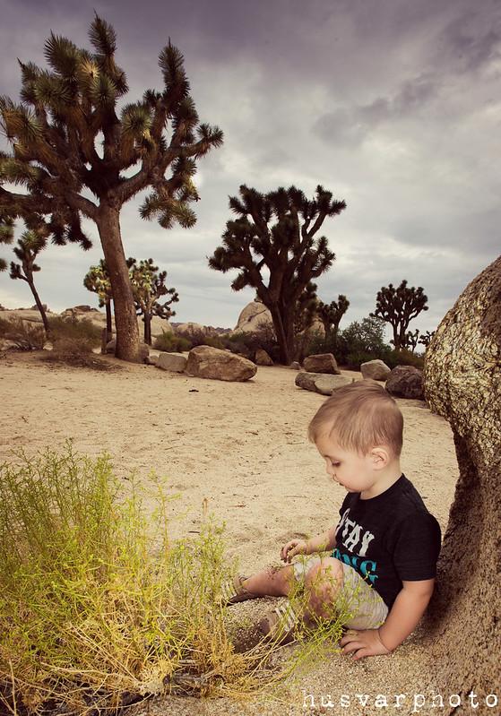 joshua tree california #showusyourmess #pmedia in_the_know_mom