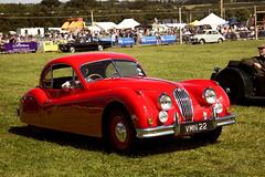 race car, automobile, jaguar xk120, jaguar xk140, vehicle, performance car, automotive design, antique car, classic car, vintage car, land vehicle, luxury vehicle, sports car,