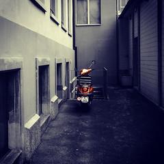 Back Yard / Hinterhof