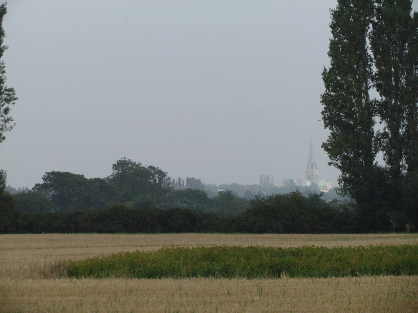 photo from walk Chichester in the distance