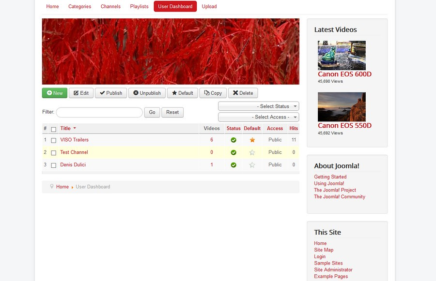 mijovideo-dashboard-channels