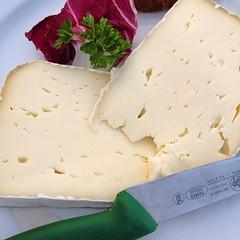 semifreddo(0.0), blue cheese(0.0), produce(0.0), dessert(0.0), sour cream(0.0), pecorino romano(1.0), food(1.0), dish(1.0), dairy product(1.0), cheese(1.0), cheddar cheese(1.0),
