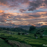 Rice Terrace at sunset time