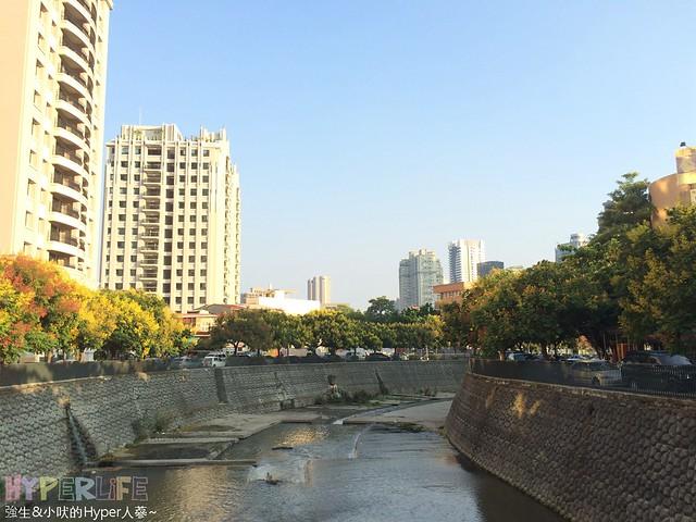 2014.09 台中華美西街欒樹