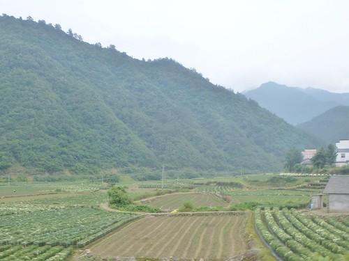 Anhui--Tunxi-Huangshan-Bus (19)
