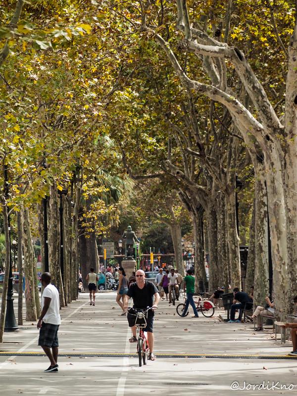 Paseando en bicicleta. Festes de la Mercè. Passeig de Sant Joan, Barcelona.