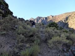 Dans la traversée du versant W de la pointe 673m