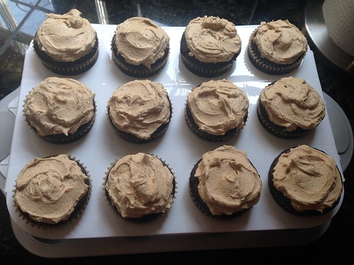 speculoos frosted