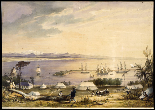 008- Vista del Puerto Nelson en el golfo de Tasman-Nueva Zelanda-Heaphy, Charles, 1841-Museo Te PapaTongareva