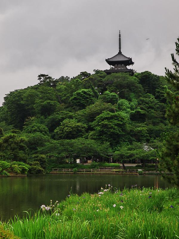 三渓園( SANKEI GARDEN )