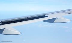 AirAsia A320 Airbus wing XOKA0094bs