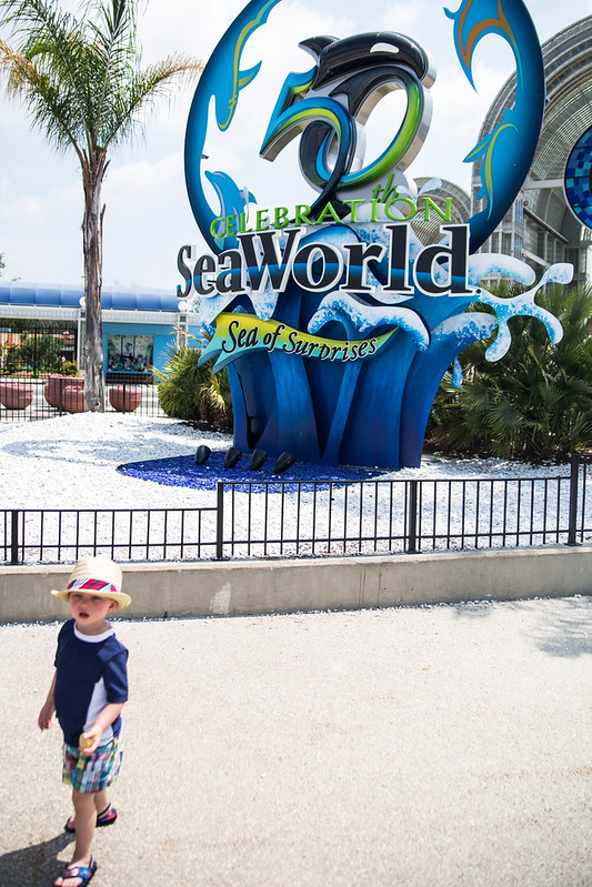 SeaWorld 50th Celebration #BBBestSummer #Shop