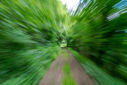 Fast Green